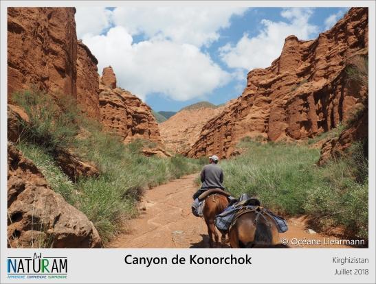 Ce canyon se situe à 1500 mètres d'altitude, caché au milieu des Tien Shan, les fameuses montagnes célestes d'Asie centrale. Ses roches rouges argileuses abritent un micro-climat très sec atteignant facilement les 40°C en été. L'hiver, il n'y neige qu'une fois tous les 10 ans. Après avoir traversé ce canyon, il suffit de parcourir une centaine de mètres pour retrouver une végétation et un climat alpin.