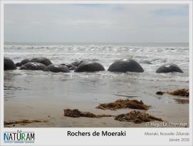 Ces rochers sont retrouvés sur plusieurs plages néo-zélandaises mais également dans d'autres pays comme en Russie ou en Écosse. Ceux-ci se seraient formés entre 4 et 5,5 millions d'années, les plus vieilles roches atteignent 2,2 m de diamètre contre 0,5 m pour les plus jeunes. Il s'agit de blocs d'argile marine fossilisée appelés « concrétions septariennes » mais contrairement à ce que l'on pourrait croire, ces boules massives ont un noyau creux ! Leur forme serait due à l'érosion par la mer et le vent. Un mystère reste cependant non résolu : comment l'érosion a pu former des sphères parfaites ?